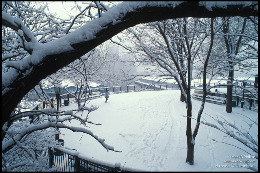 Snow on the Brooklyn Heights Promenade creates a winter wonderland. ©Mark D Phillips
