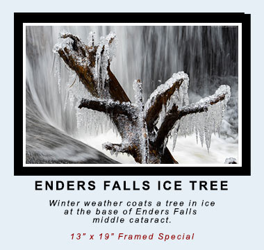 "ENDERS FALLS ICE TREE: Winter weather coats a tree in ice at the base of Enders Falls middle cataract.  13"" x 19"" Framed Special. ©Mark D Phillips"